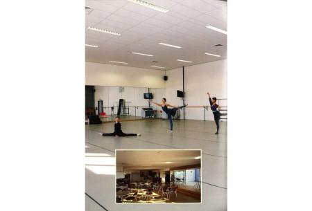 Ballet royal de Flandre